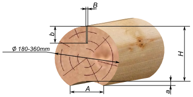 Cylindrical logs with edges